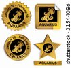 Aquarius Zodiac Set : Gold satin buttons with name and date. - stock vector