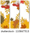 Autumn banners with fall leafs - stock vector