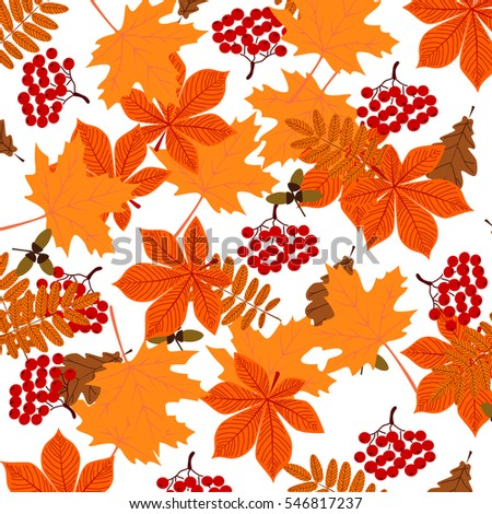 Background with autumn leaves, berries and acorns