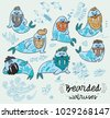 bearded walruses set. vector...