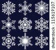Beautiful snowflakes set for christmas winter design - stock photo