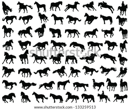 Big set of horses silhouettes-vector