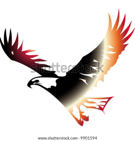 bird.vector image