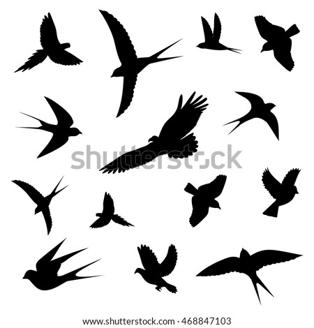 birds in flight icons,vector illustration