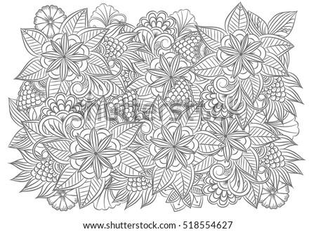 Floral Set Black White Doodle Flowers Stock Vector