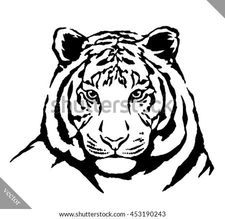 vector tiger sport logo tshirt stock vector