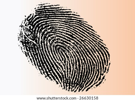 Black and White Vector Fingerprint - Very accurately scanned and traced ( Vector is transparent so it can be overlaid on other images, vectors etc.)