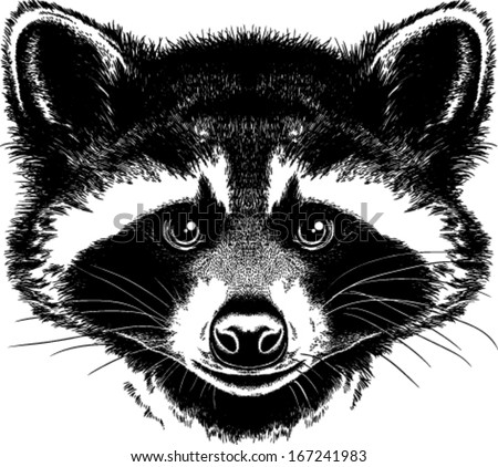 Pin Home-hunting-coon-decal-4276 on Pinterest Raccoon Face Clip Art Black And White