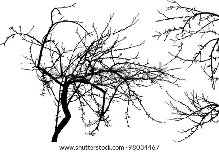 Black Faced Stock Photos Illustrations And Vector Art in addition Kool Aid 565241 together with 424426 Ezra Name besides Naked Tree Silhouette as well Cd33939d8298fec1. on fashion for home wallpaper design html