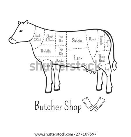 basic cow internal organs beef cuts stock vector 369552578