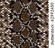 Brown snakeskin - stock