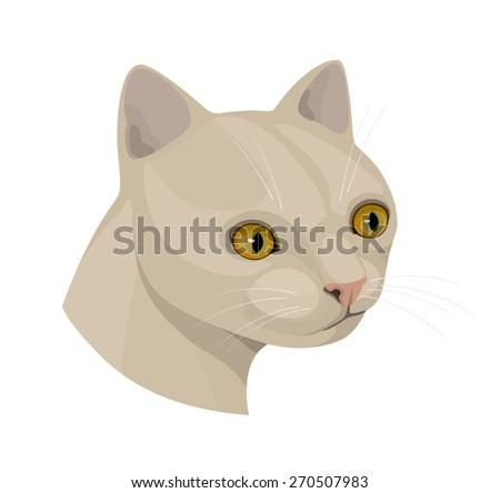 cat with yellow eyes and pink nose, vector illustration