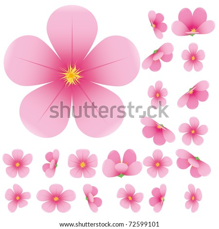 Cherry blossom, flowers of sakura, set, pink, flowers collection,vector illustration