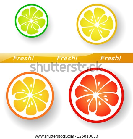 Citrus fruits.Slices of funny fresh citrus isolated on white background. Vector illustration for your healthy design.