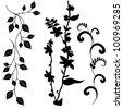 Collection for designers, plant vector set - stock vector