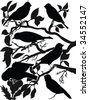 collection of birds on wood silhouette - vector - stock vector