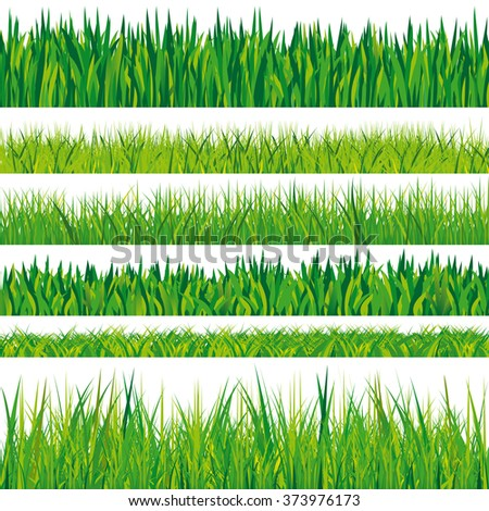 collection of grass textures isolated on white background, vector