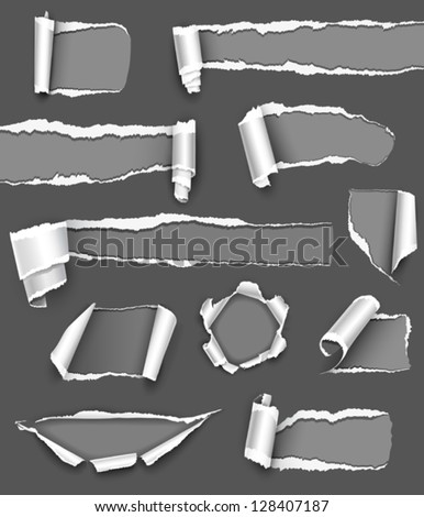 Collection of gray torn paper. Vector