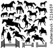 collection of horse vector - stock vector