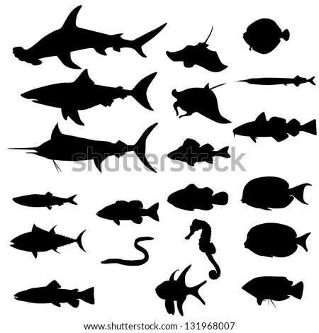Collection of saltwater fishes isolated on white (Vector)
