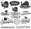 Collection of Thanksgiving Calligraphic Vector Illustrations in Retro Style - stock