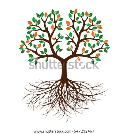 Color Tree Leafs Roots Vector Illustration Stock Vector 389348647 ...