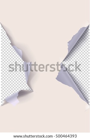 Colored torn paper on a transparent background. Vector illustrations.