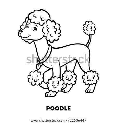Coloring Book For Children Dog Breeds Poodle