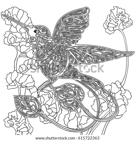 Coloring Book Page For Adult Flying Hummingbird And Flowers Stylized Bird