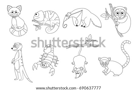 Coloring Book Page Preschool Children Colorful Stock Vector