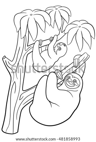 Sloth Black And White Outline Sketch Coloring Page