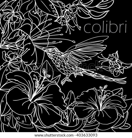 Coloring Pages With Tropical Birds Flowers And Leaves Background Vector