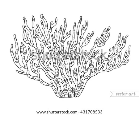 Coral Isolated Coral Reef Vector Illustration Stock Vector ...