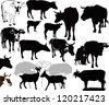 Cow  goat animals calf isolated white background vector silhouette - stock vector