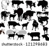 Cow  goat animals calf isolated white background vector silhouette - stock photo