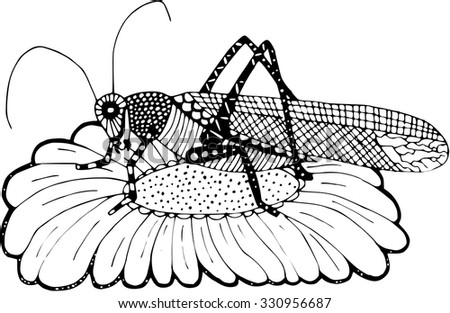 Cricket on daisy Zentangle