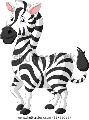 Cute zebra cartoon of illustration