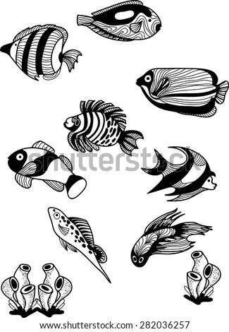 Set Black White Tropical Fish Exotic Stock Vector 508020325
