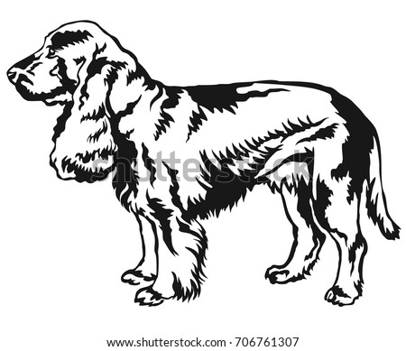 Black white linear draw lion vector stock vector 453186130 decorative portrait of standing in profile field spaniel vector isolated illustration in black color on ccuart Choice Image