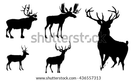 Christmas nativity borders clip art moreover Various Elements Of Vector Silhouette Flowers And Trees 69 Elements 20780 moreover Deer Vector Illustration 509188444 in addition Deer further Stock Vector Set Of Deer Silhouettes Vector. on antler silloette