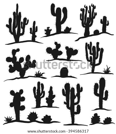 Different types of cactus plants realistic decorative icons set isolated on white background. Vector illustration.