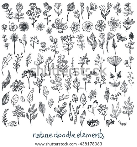 Doodle Sketch nature collection of elements, flowers, leaves and insects, Vector