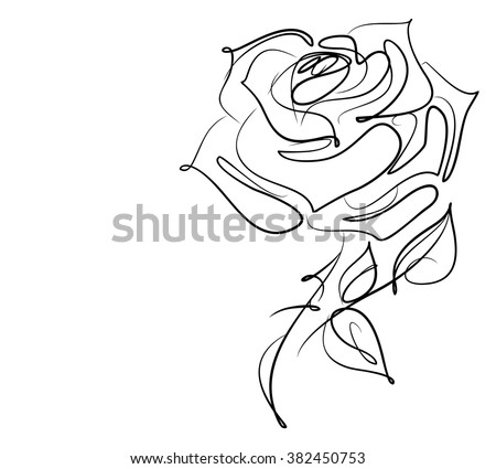 Drawing vector graphics with floral pattern for design. Floral flower natural design. Graphic, sketch drawing. rose