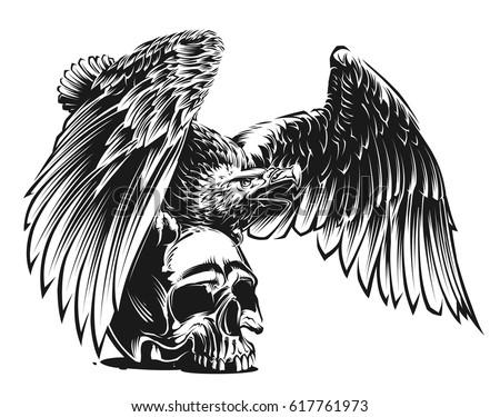 bald eagle stock vector 224092831 shutterstock