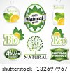 eco bio natural label collection with mint leaf and lemon slice in all different styles from modern to retro - stock vector