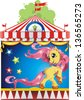 Elegance Circus horse of different elements on a white background, beautiful illustration - stock