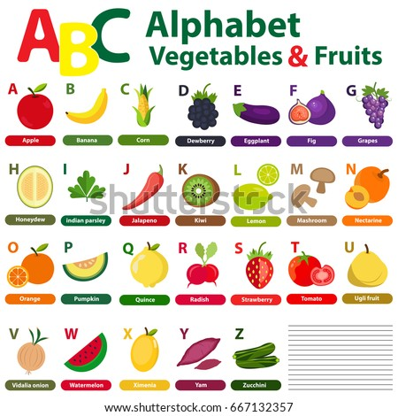English Alphabet Student Fruits Vegetables Back Stock