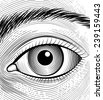 Engraving human eye. Sketch eyes closeup on a white background. Vector illustration - stock vector
