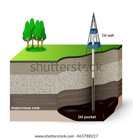 Soil profile soil horizons piece land stock vector for Three uses of soil