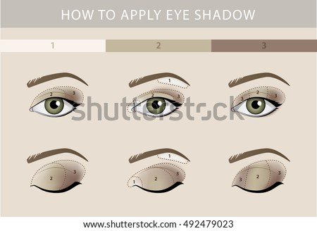 Eye makeup template vector